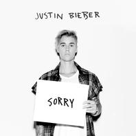 Sorry (Remix) Mp3