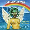 Sufjan Stevens - A Beginner's Mind (With Angelo De Augustine) Mp3